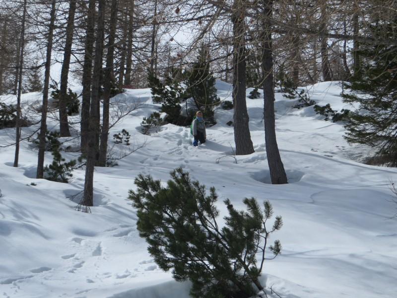Zimovanje Pokljuka (141)