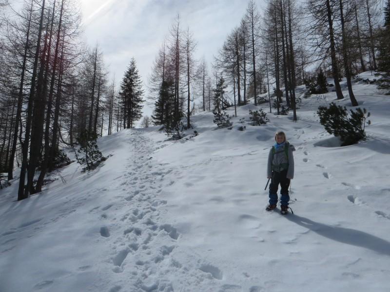 Zimovanje Pokljuka (160)