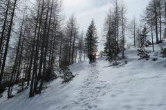Zimovanje Pokljuka (143)
